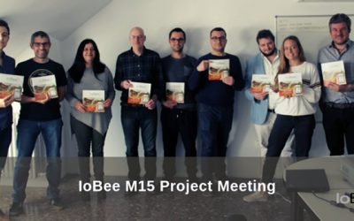 IoBee M15 Project Meeting