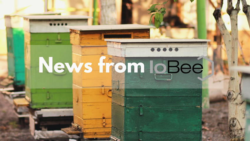 News from IoBee