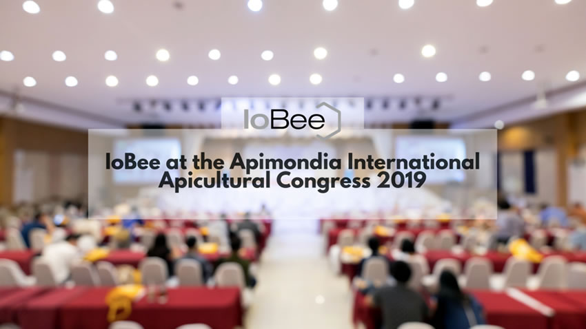 The Internet of Bees Project is Participating in the Apimondia International Apicultural Congress 2019