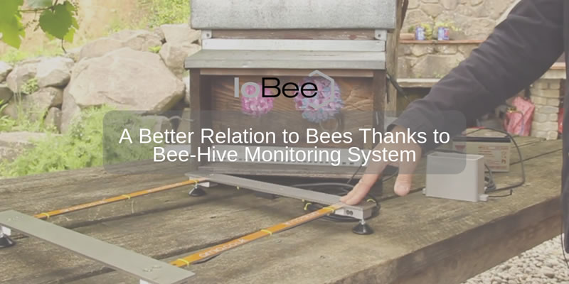 A Better Relation to Bees Thanks to a Bee-Hive Monitoring System