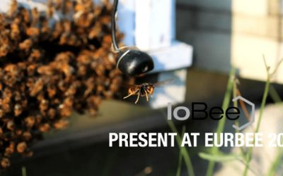 The application of non-intrusive electronic bee hive monitoring to field studies – Presentation at EurBee