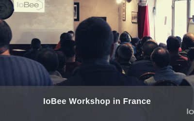 Sharing Expectations and Experiences with French Beekeepers